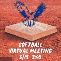 High School softball virtual informational meeting